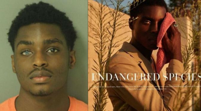 Lucky! Another Mugshot Turns Into A Head-Shot And Modeling Contract For Criminal