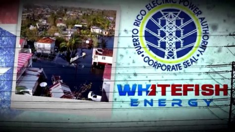 whitefish-energy